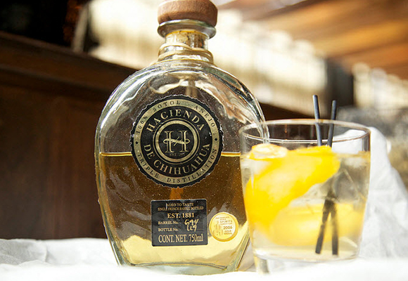 Sotol licor mexicano