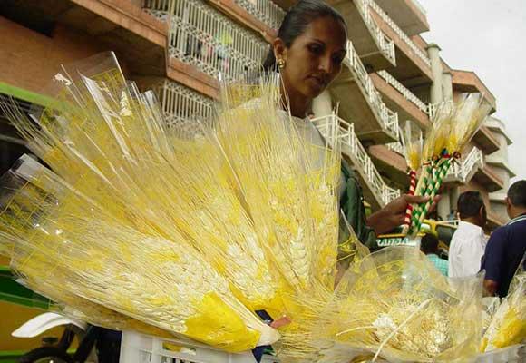 Resultado de imagen para espigas de trigo año nuevo