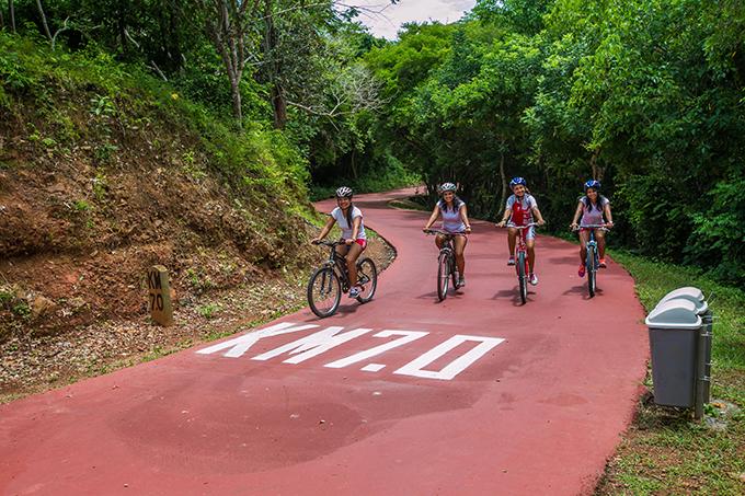 Bicicleta en Ixtapa