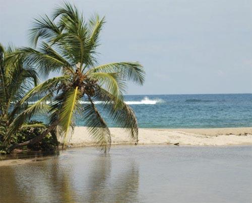 Los 5 parques naturales más importantes de Colombia